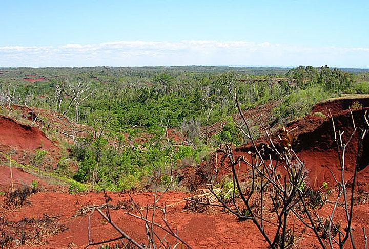 Landscape in Madagascar